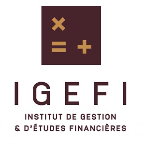 IGEFI – ACCOUNTING AND FINANCE