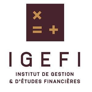 IGEFI – ACCOUNTING AND FINANCE